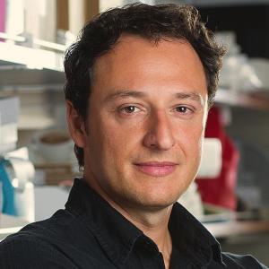 Alysson Muotri, Ph.D.