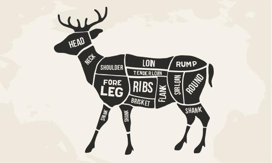 deer butchering chart