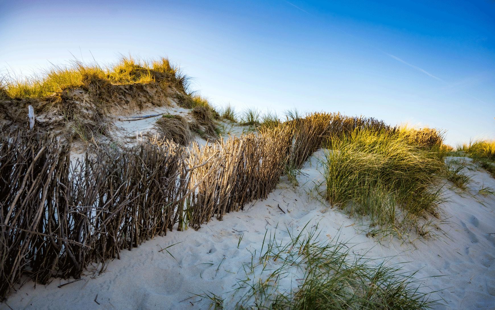 Sylt Dunes