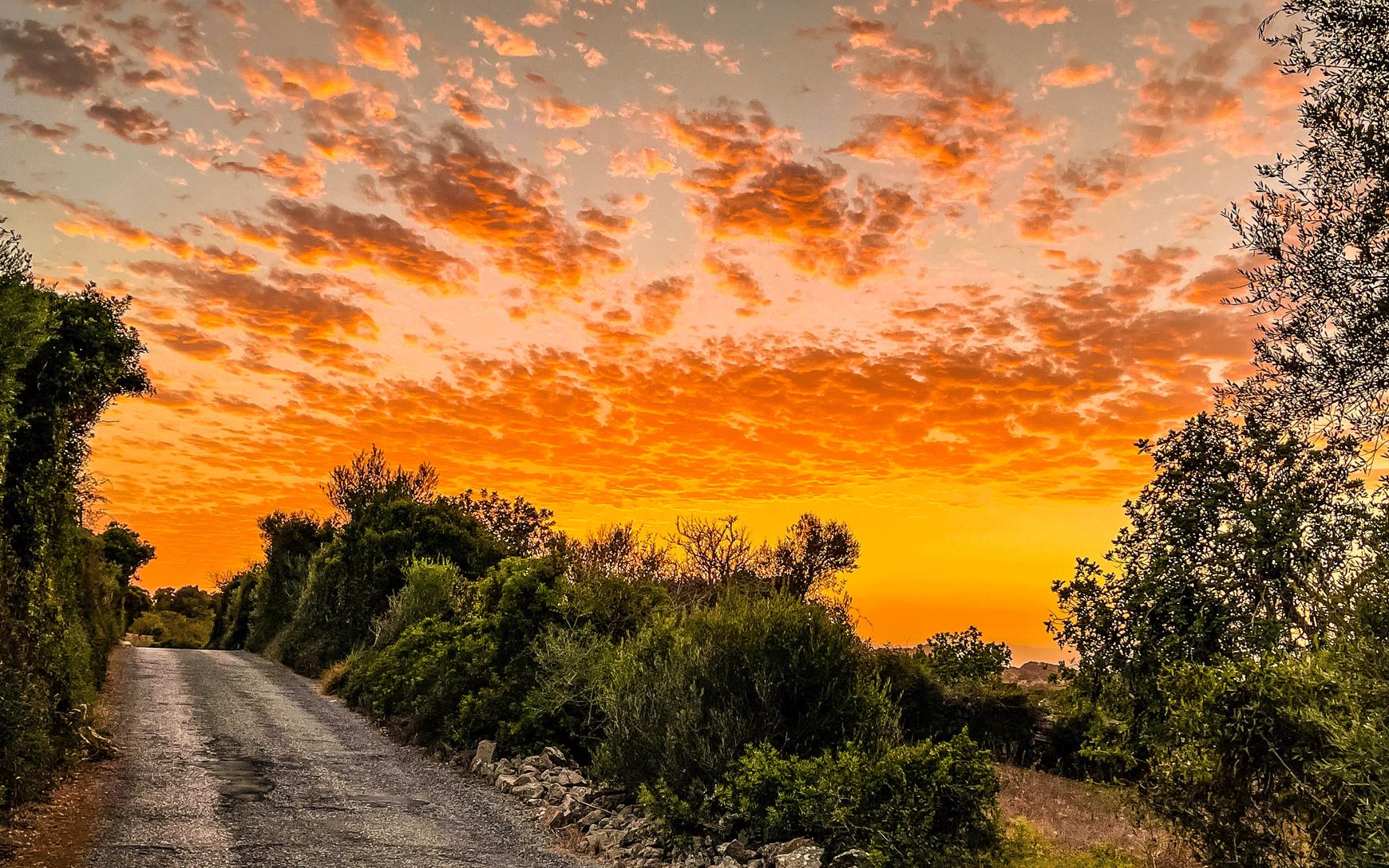 Son Macia Sunset
