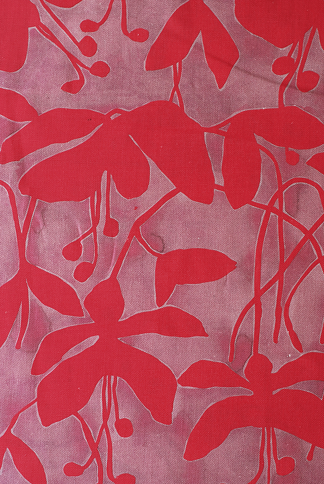 Fuchsia Fuchsia