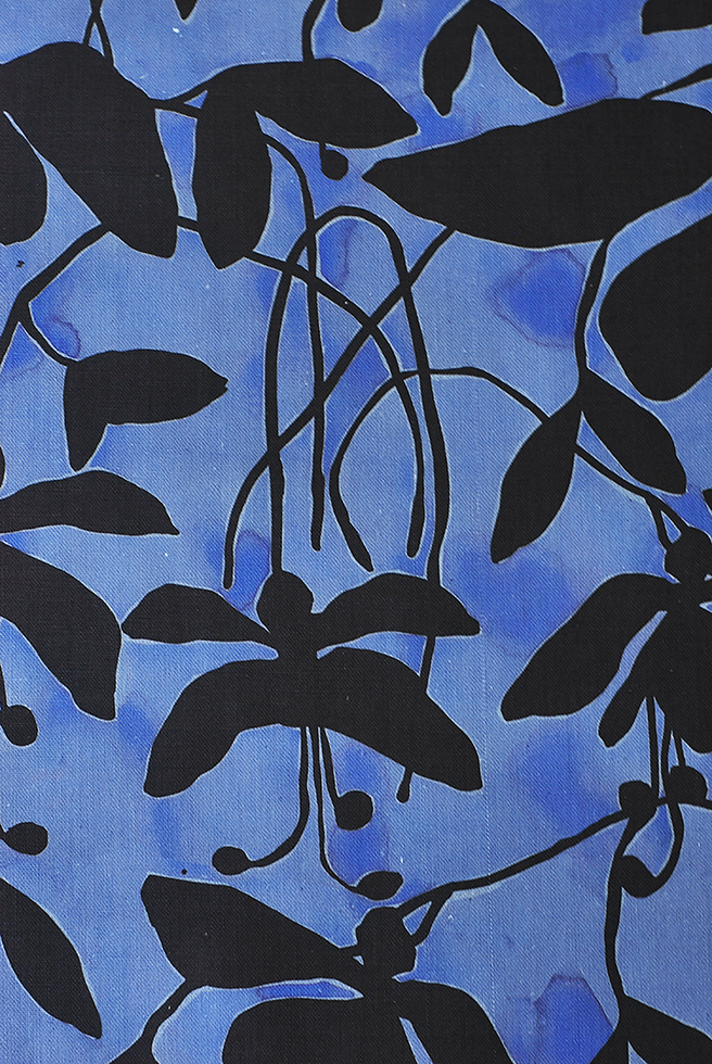 Cornflower Fuchsia