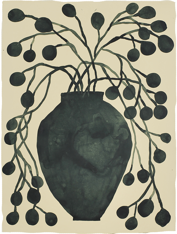 'potted eucalyptus'