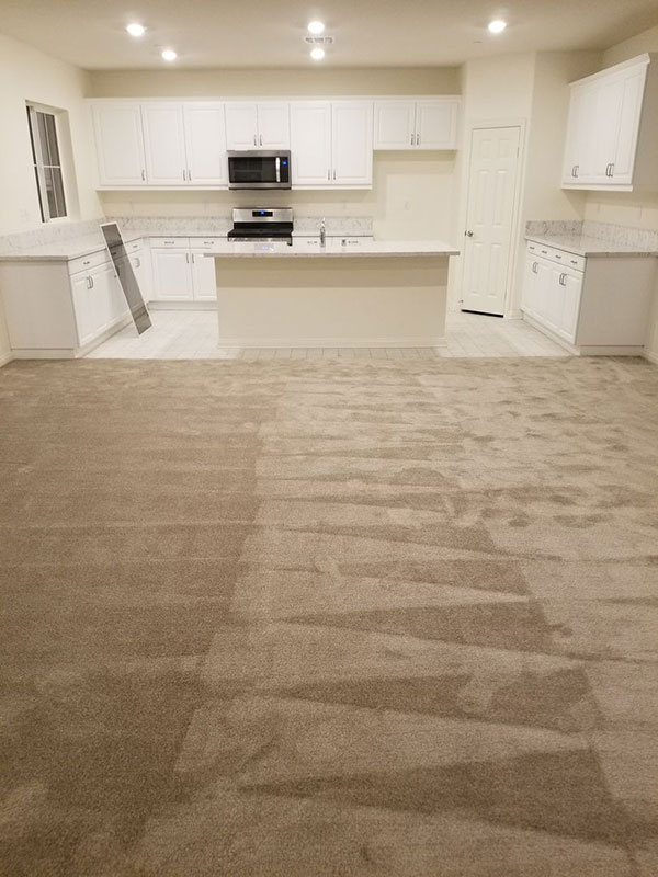 A clean space area with a recent vacuumed carpet.