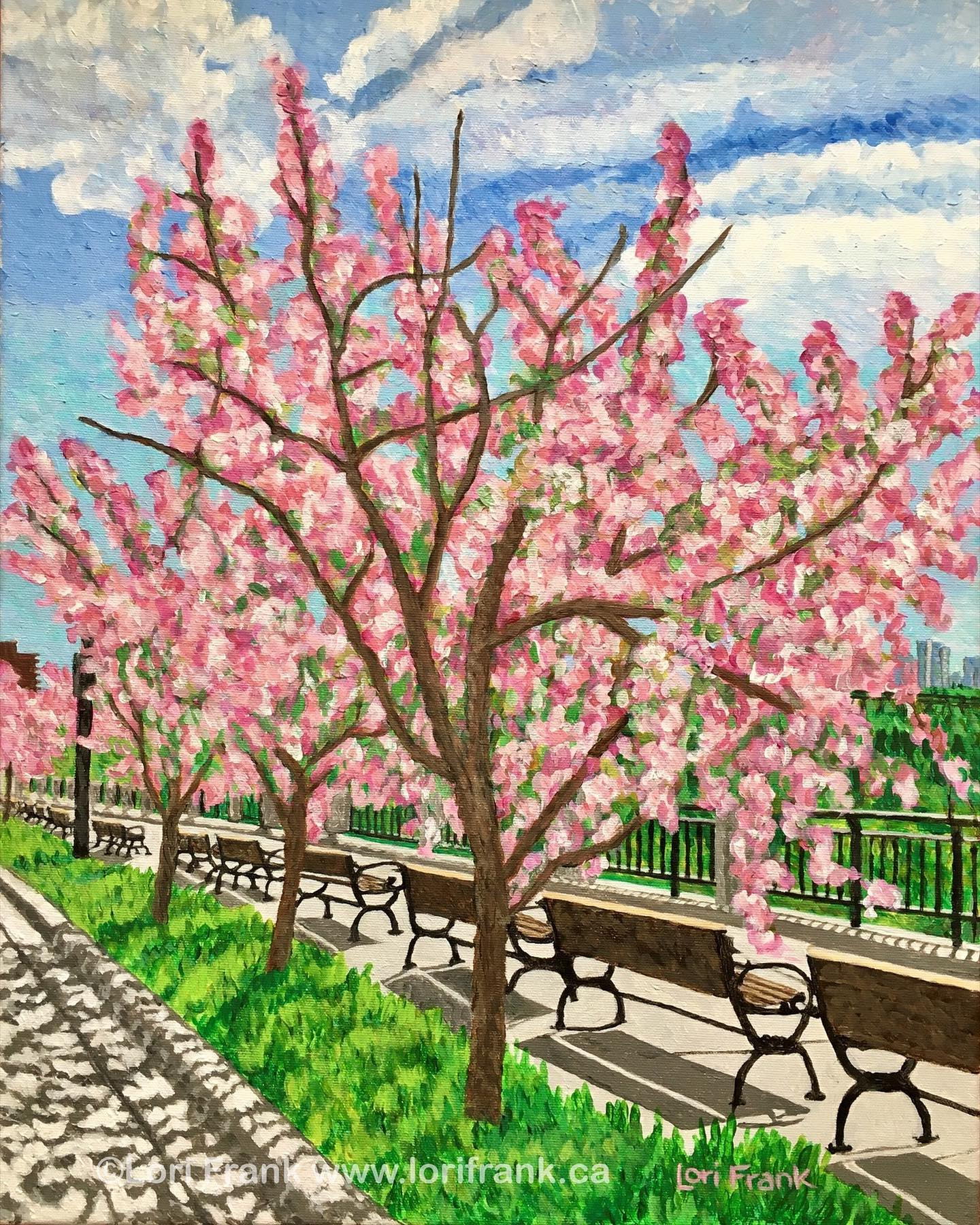 Cherry Blossom Way, Victoria Promenade, Trailblazing Series of Edmonton's river valley