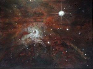Hubble Inspirations - Fox Fur Nebula