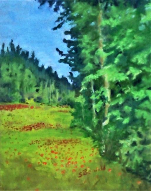 Prairie Wildflower Meadow