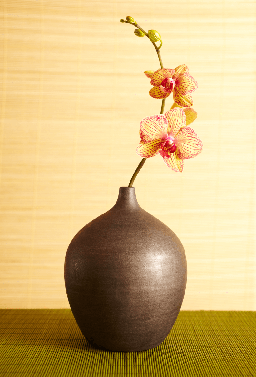 Flower pot with bloomed flowers