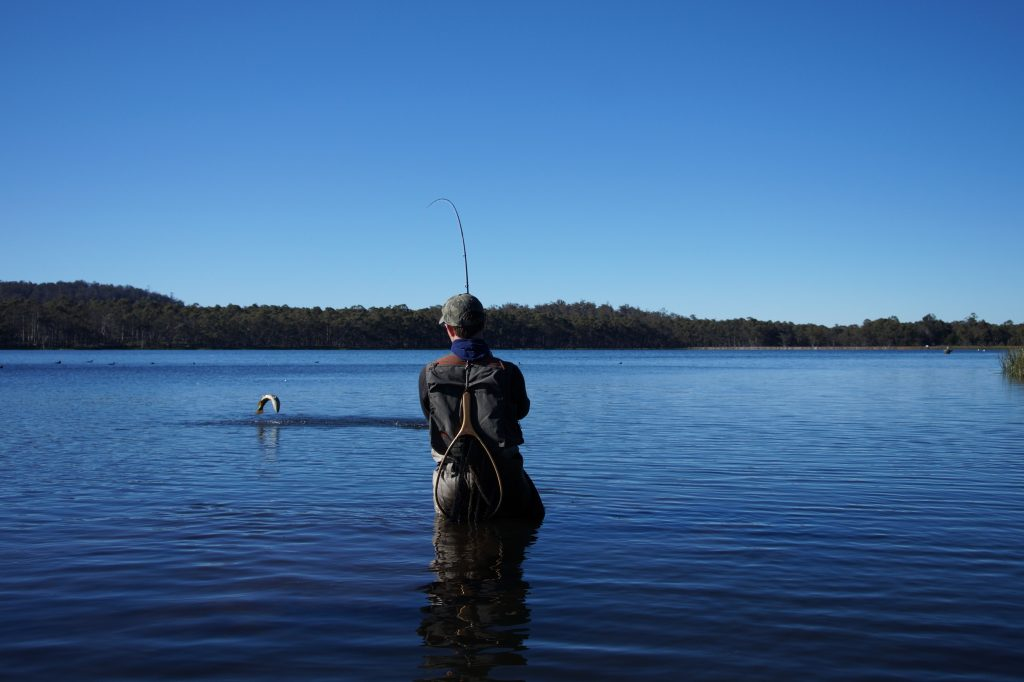 A Guide To Planning Your Trout Fly Fishing Adventure in Tasmania