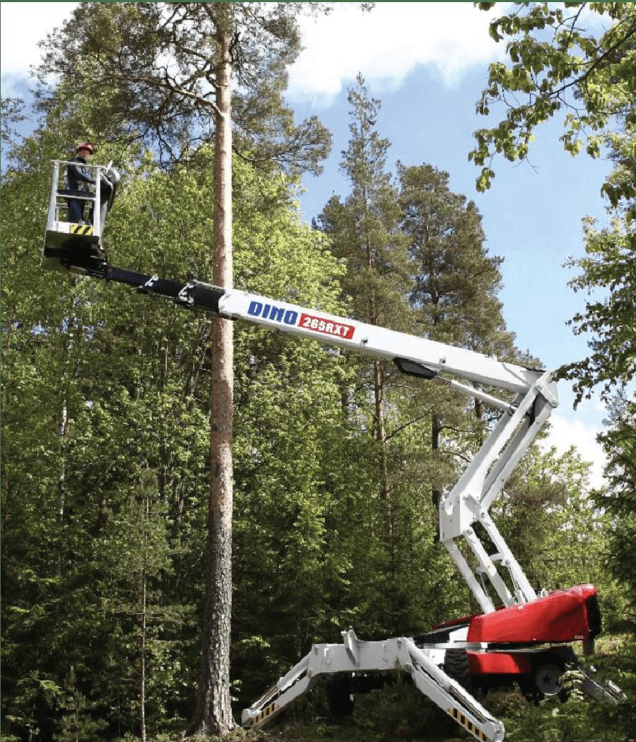 Boom lift in tree