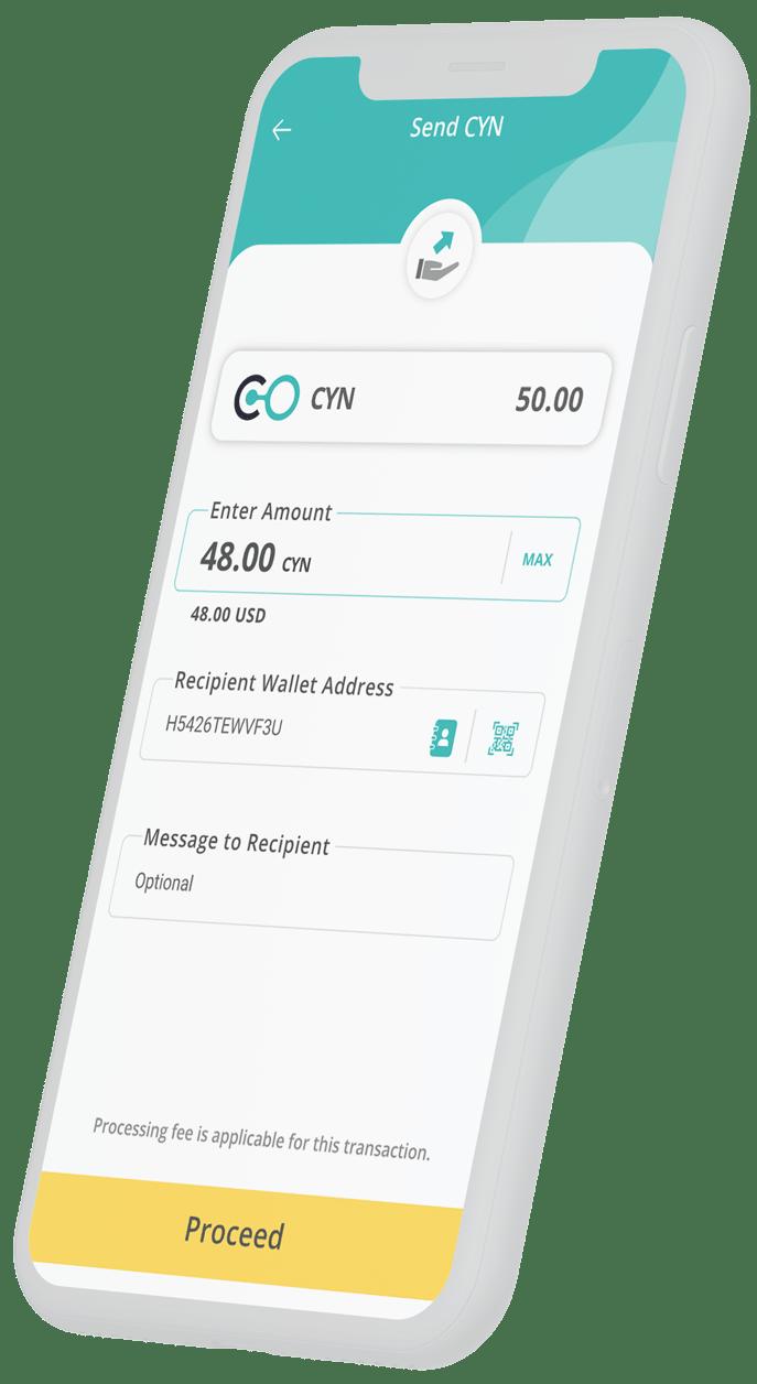 Coyni app transaction screen sending tokens on a mobile device