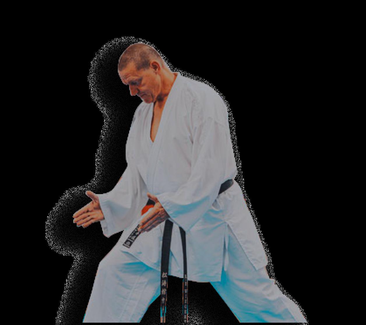 Blackbelt-Elite Training - Zum schwarzen Karate Gürtel innerhalb von 12 Monaten