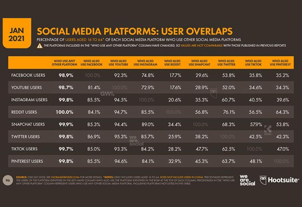 Die meisten nutzen mehrere Social-Media-Plattformen