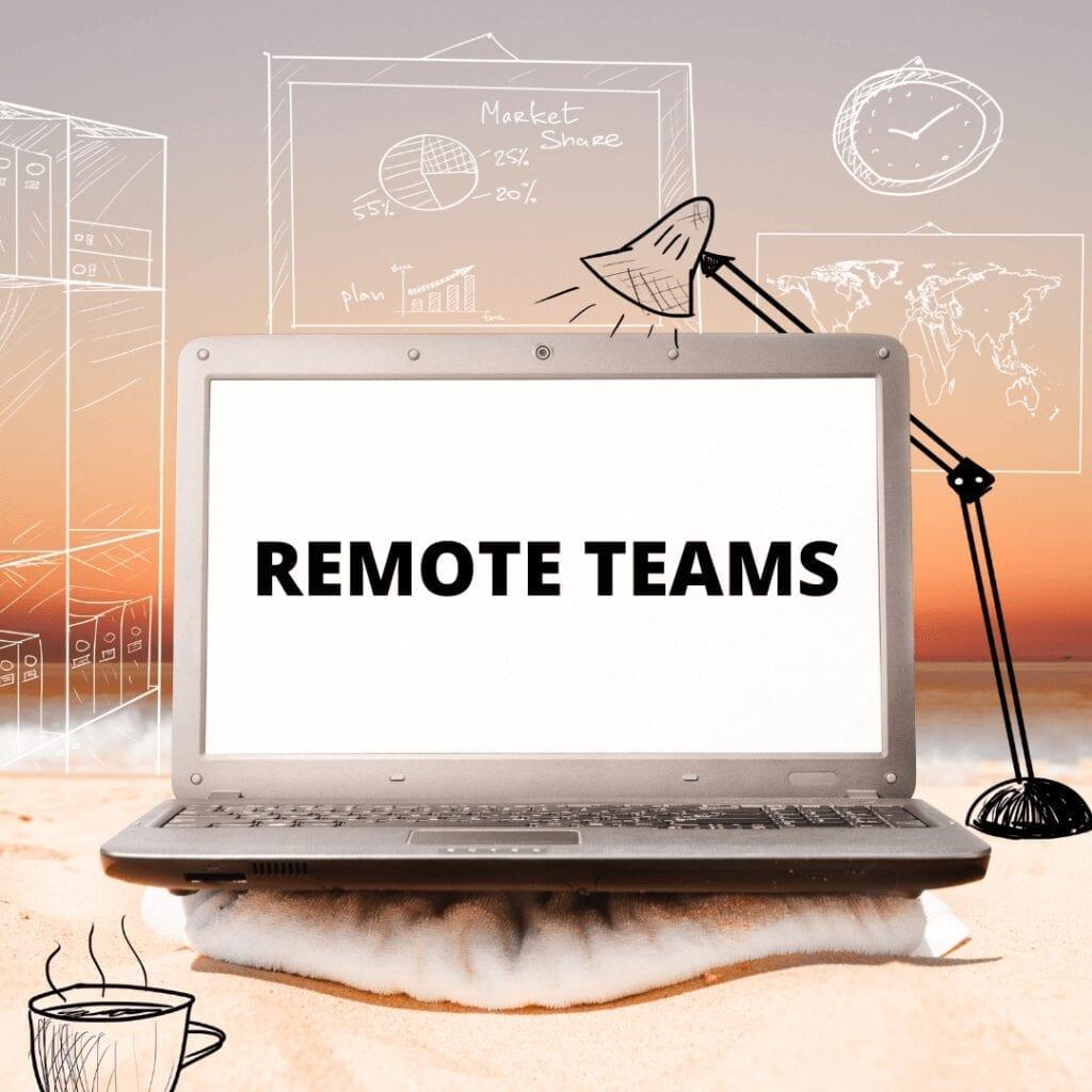 remote nonprofit leadership consultants