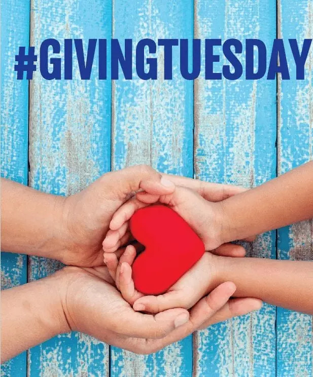 giving tuesday nonprofit board consultant