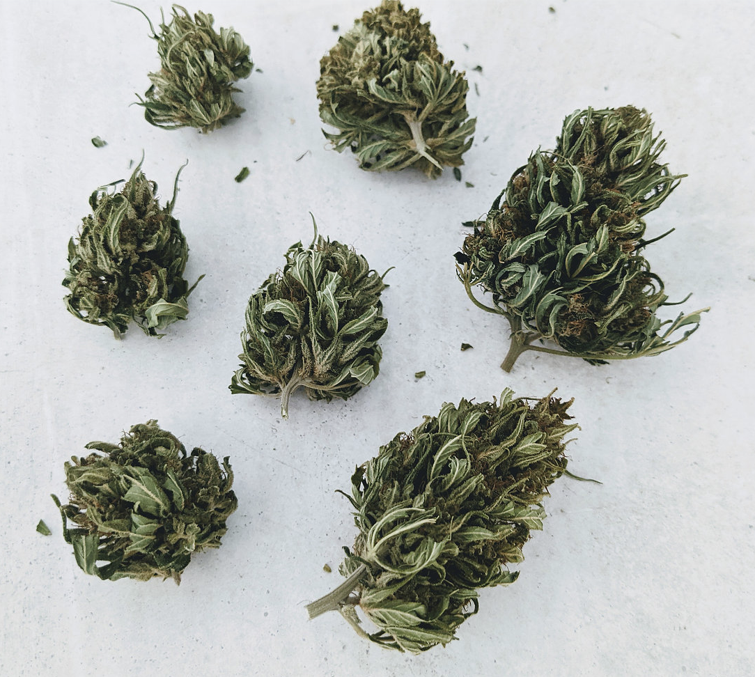 CBD Hemp Flower for Cooking and Making - My Personal Plants