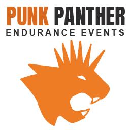 Punk Panther logo