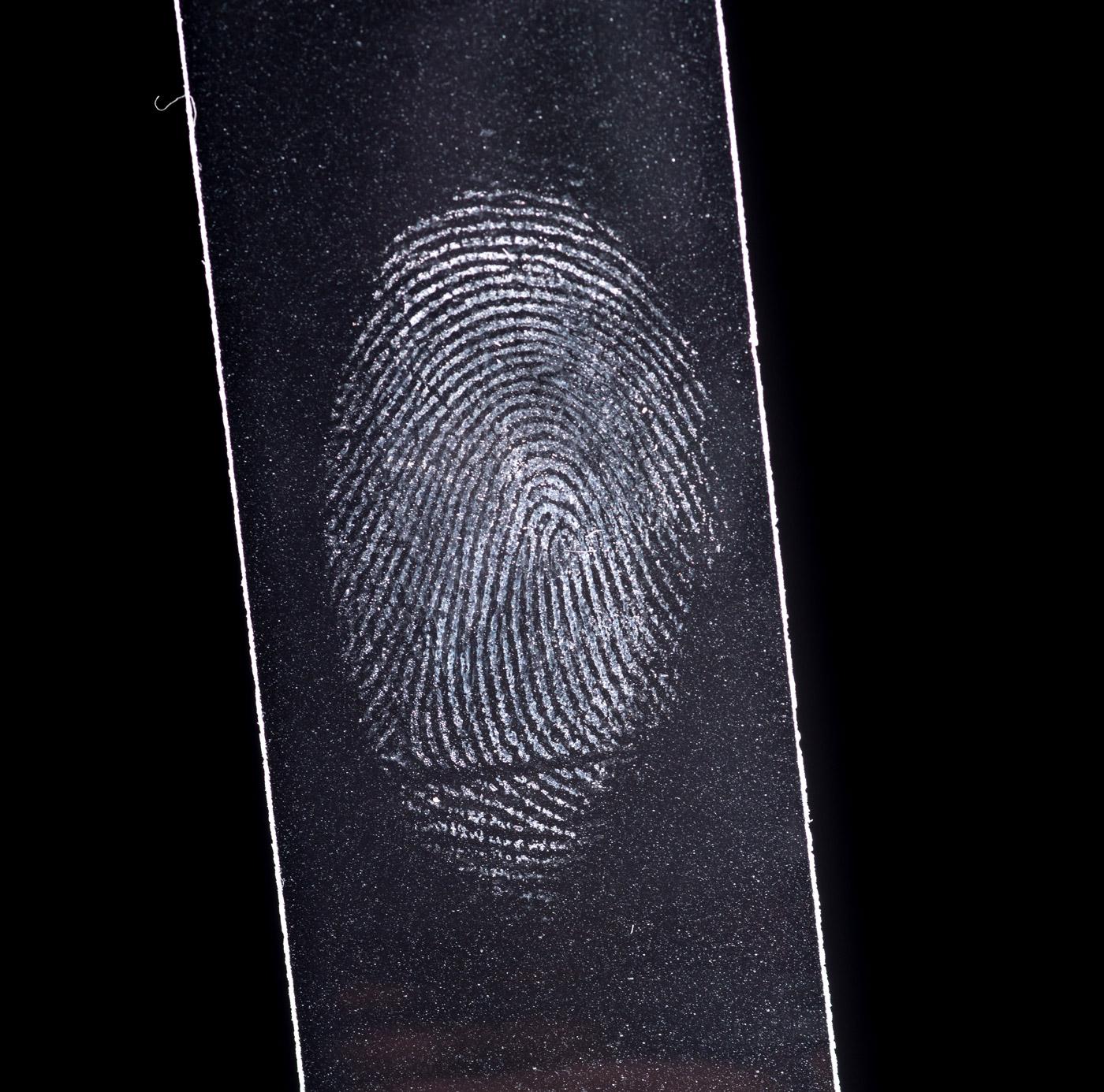 Fingerprint lifting investigations