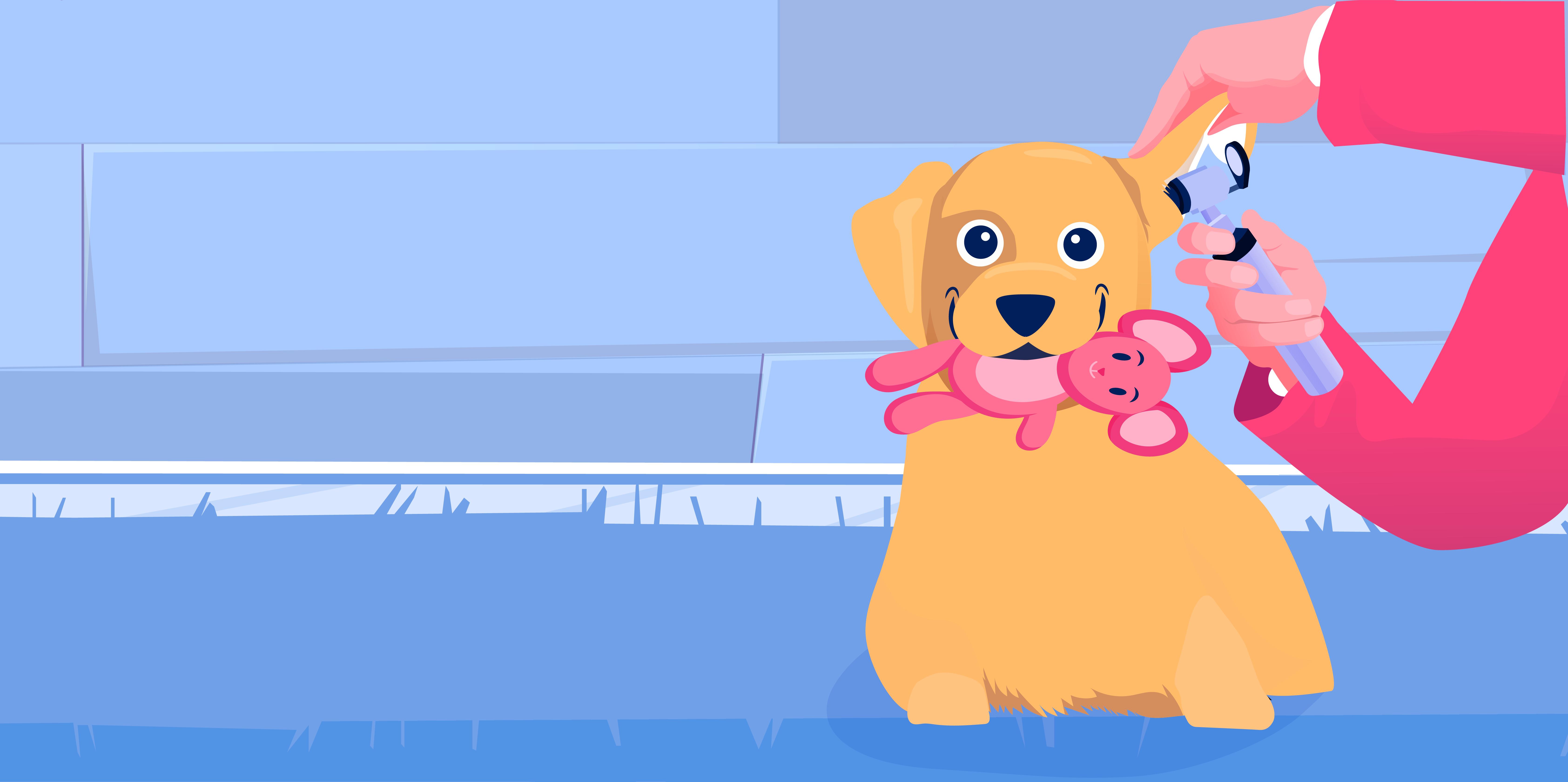 BetterVet's Fear Free® Approach to Pet Care