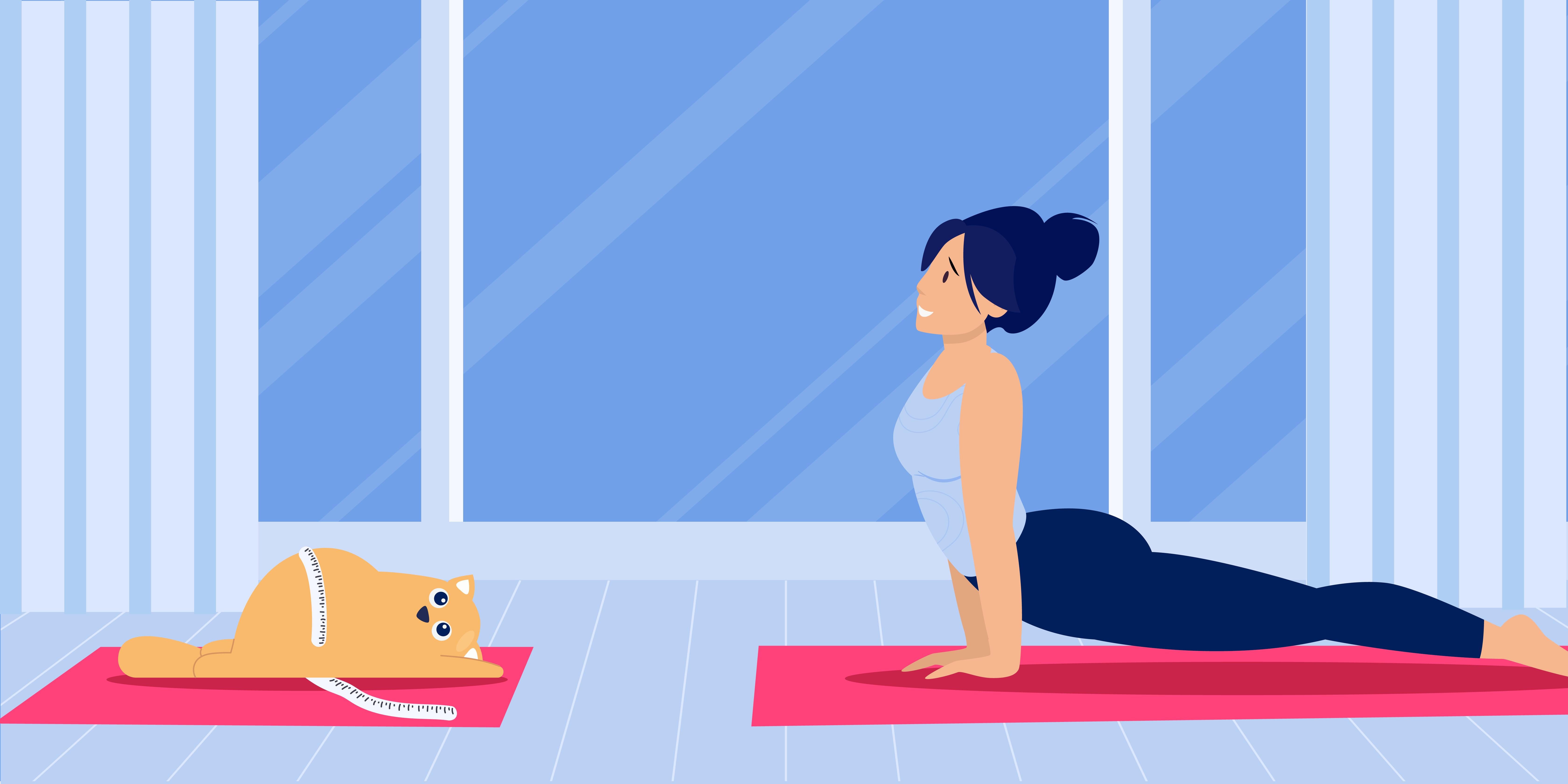 How Do I Know if my Dog or Cat is at a Healthy Weight?