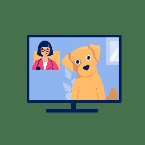 Video consultation illustration.