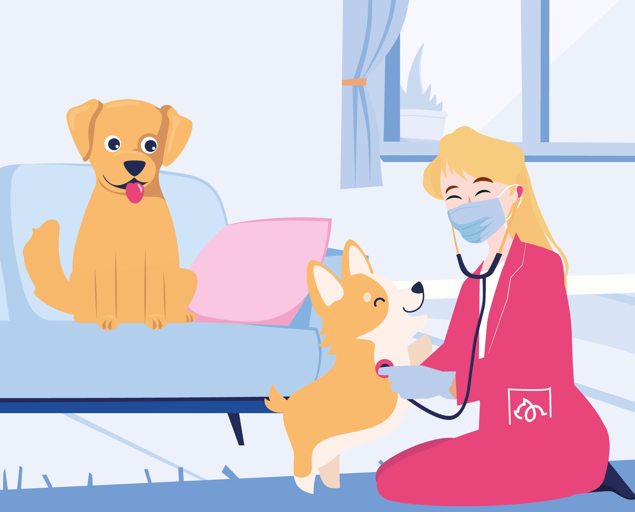 BetterVet vet doing a physical check to pets illustration.