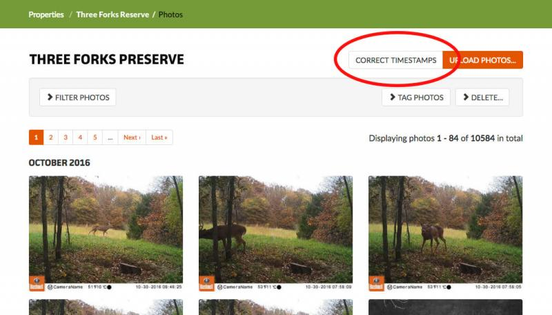 Correct Timestamps for trail and game cameras