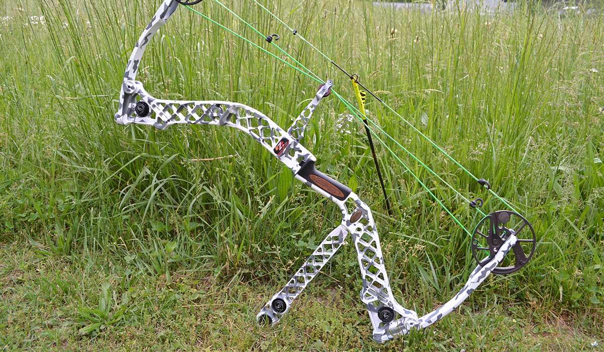 Custom paint Mathews bow