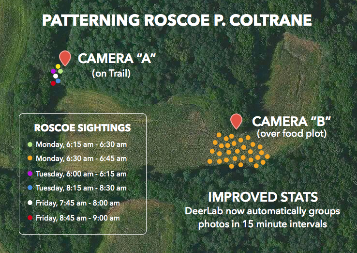 Patterning bucks with trail camera photos