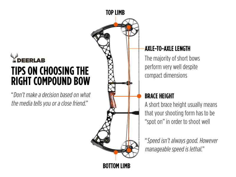 Tips on Choosing the Right Compound Bow
