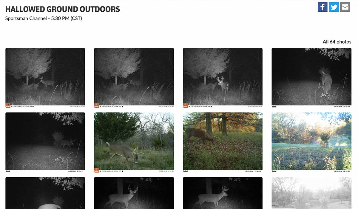 Create Trail Camera Photo Websites with DeerLab's Albums
