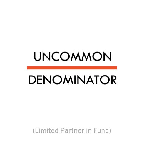 Uncommon Denominator