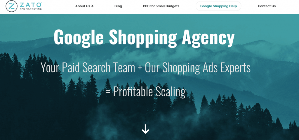google shopping agency