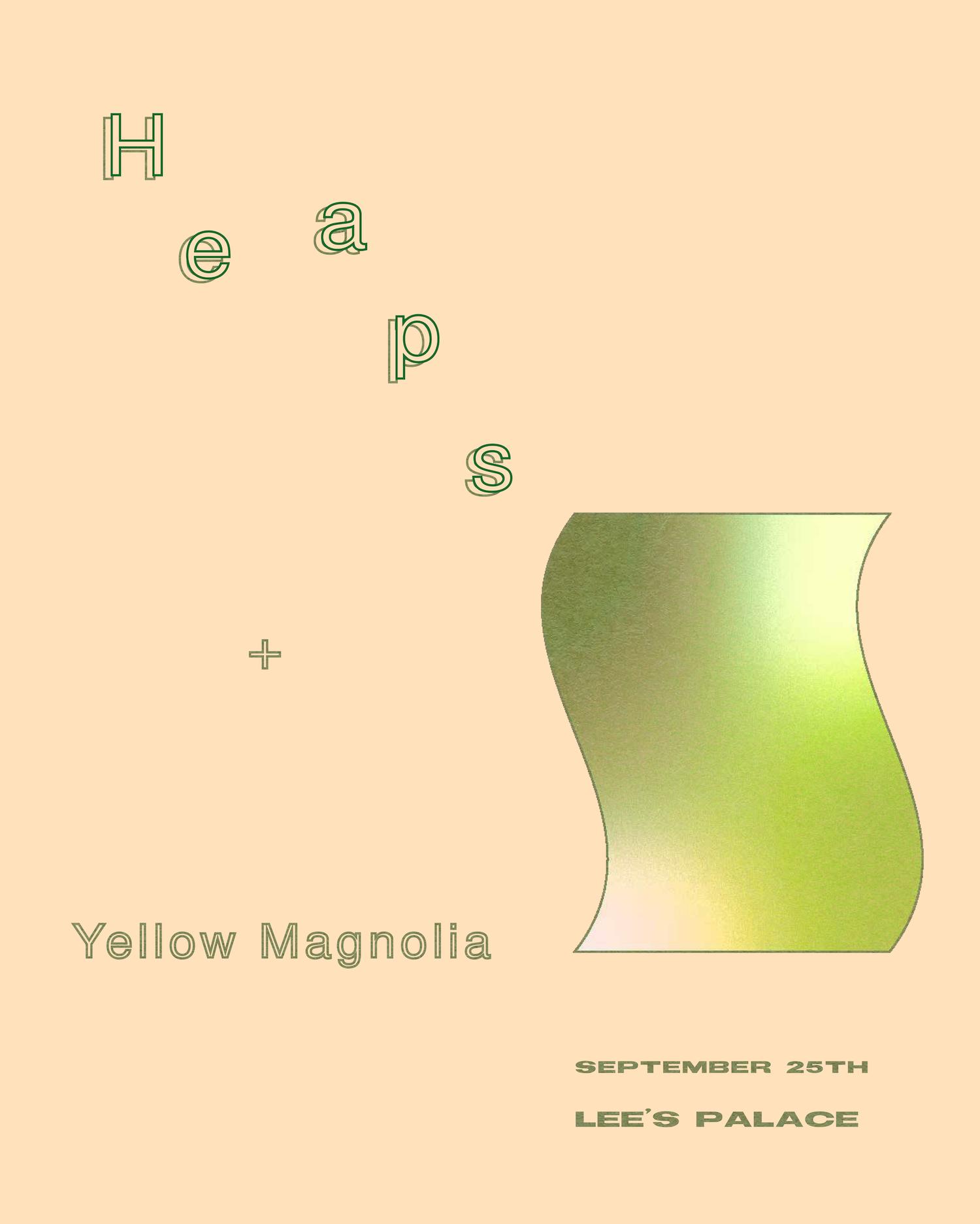 Heaps, Yellow Magnolia at Lee's Palace