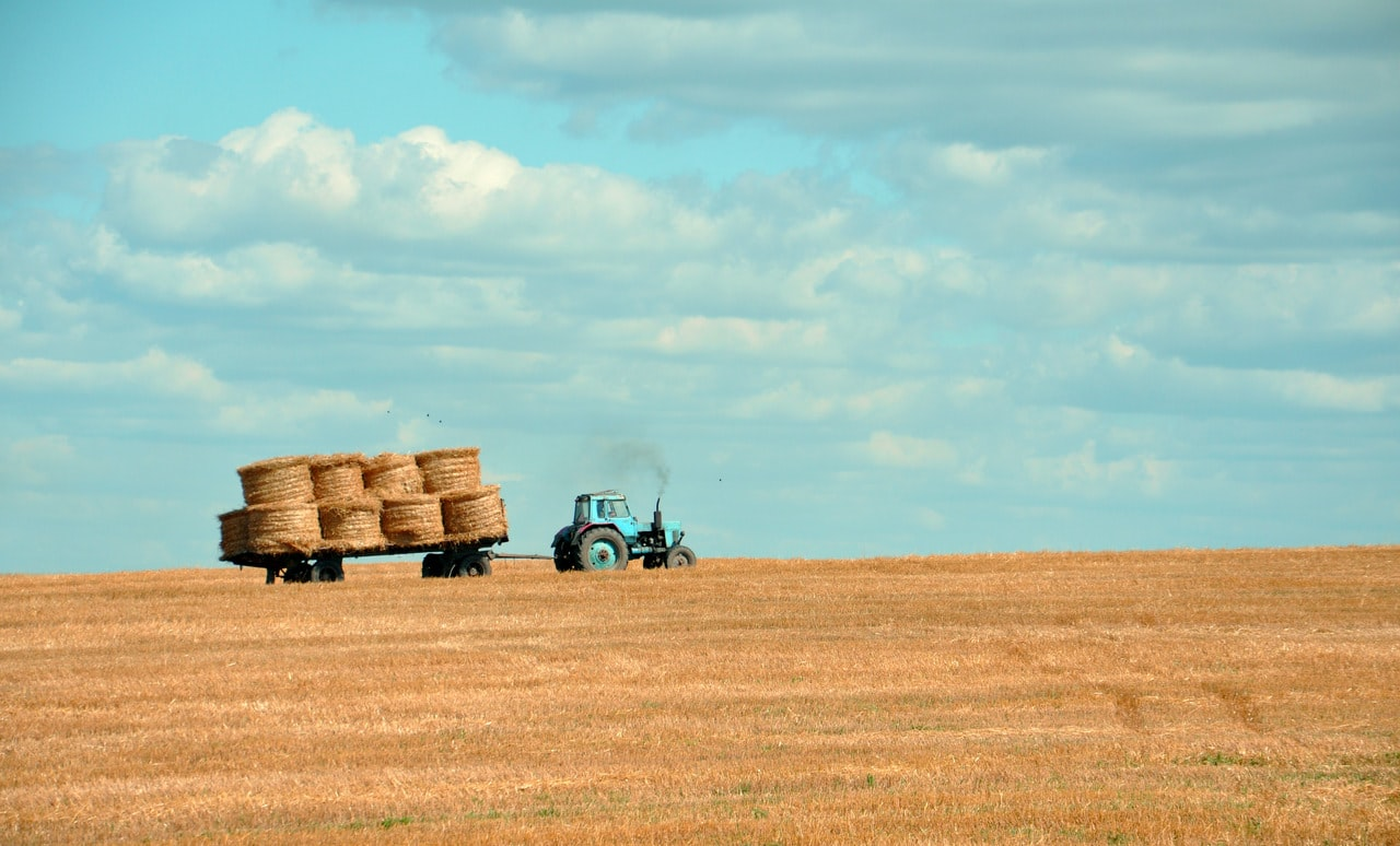 The future of farming focuses on simplification