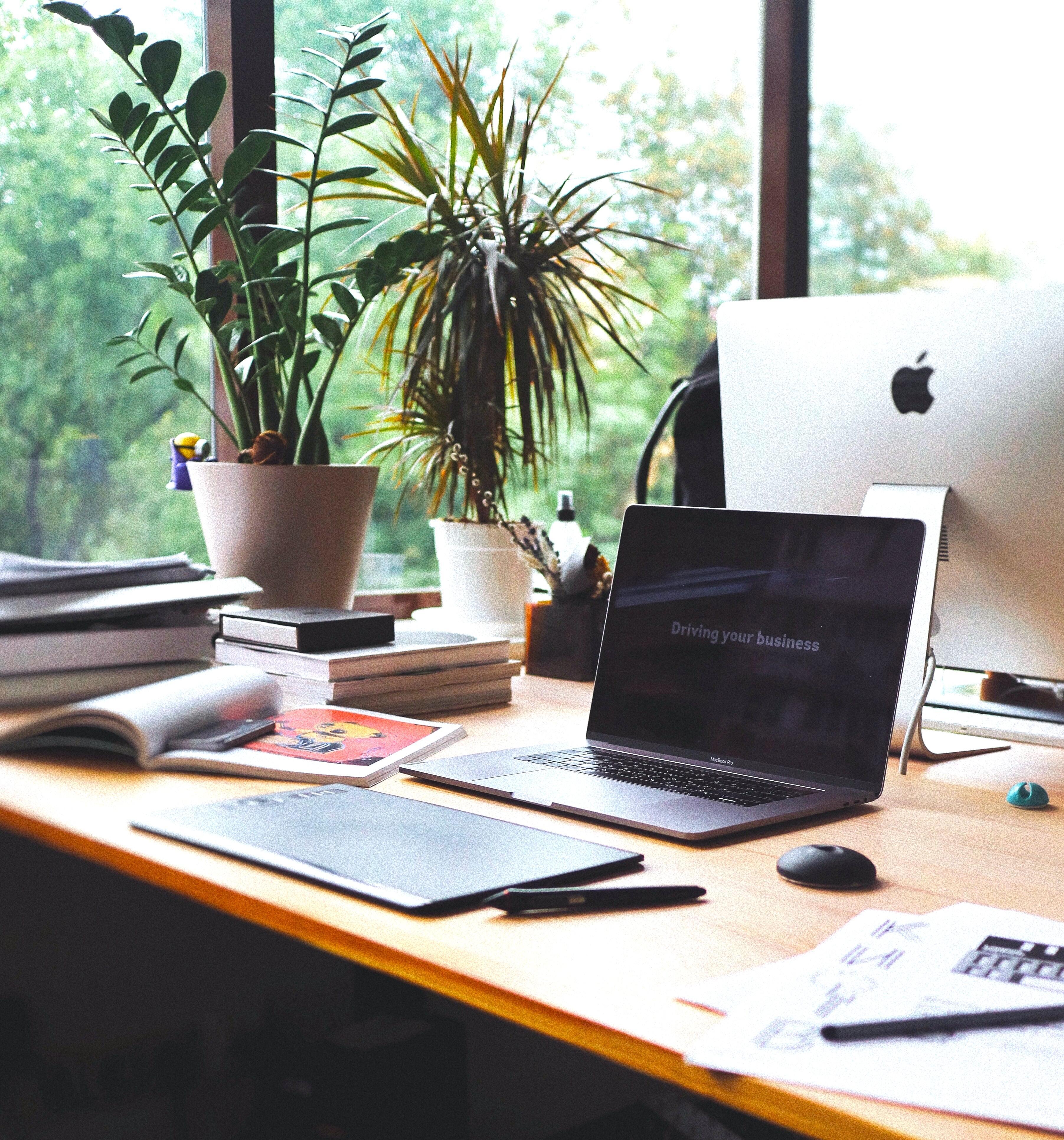 Schreibtisch mit dem Mac im Büro mit Pflanzen im Hintergrund