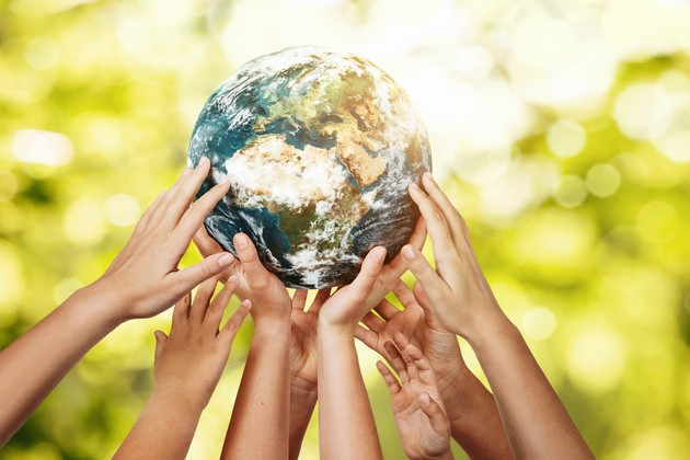 Combatting Environmental Issues as an Organisation