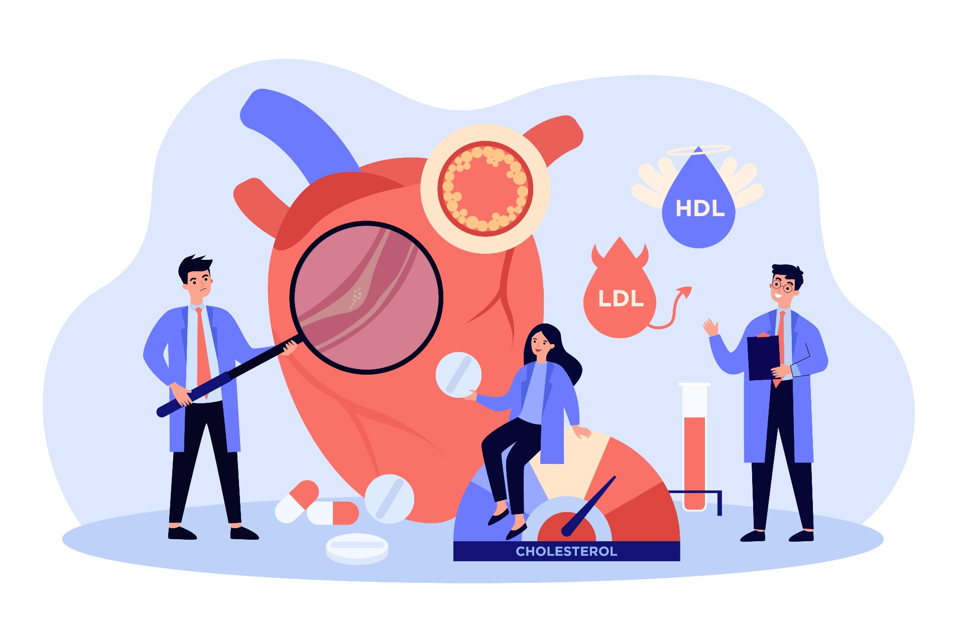 The role of cholesterol