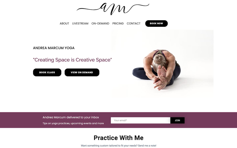 An image of the website, soulfiremovement.com.com