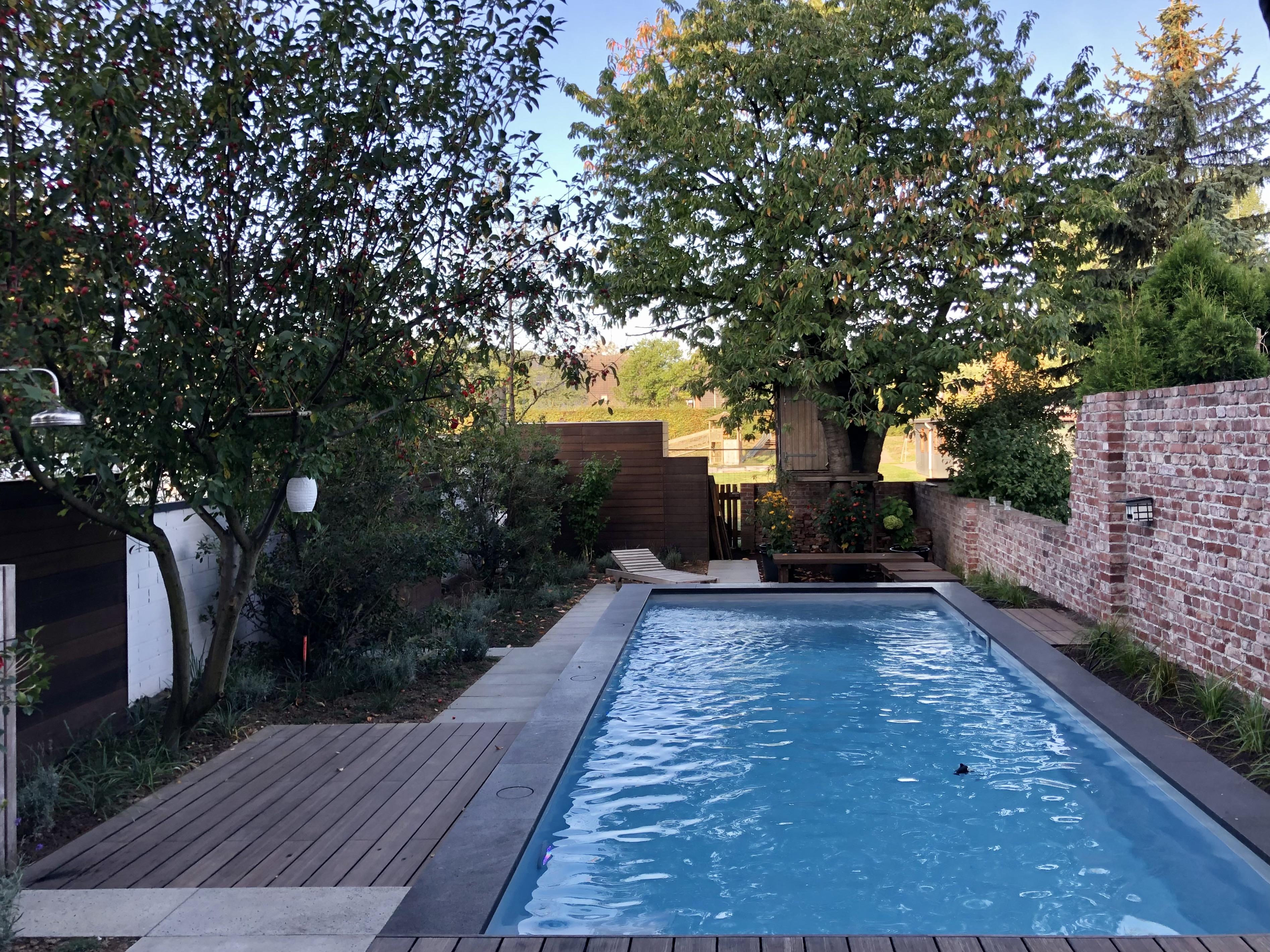 Modernes Poolbecken integriert in einen kleinen Garten