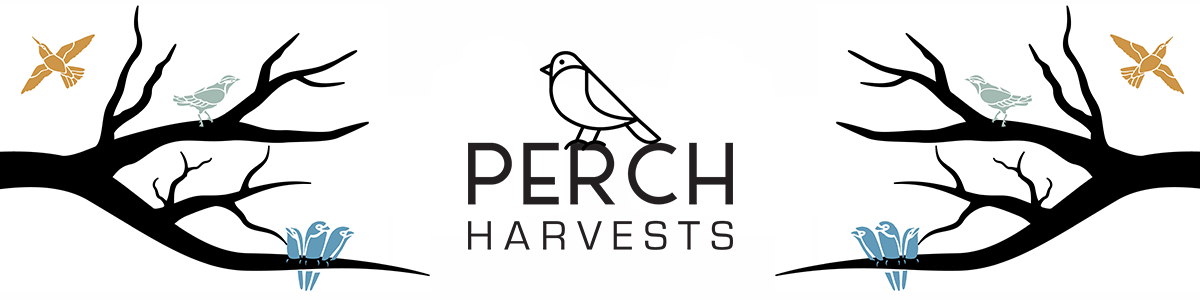 A vector illustration of the Perch logo, including a bird, the brand name, and a few branches.