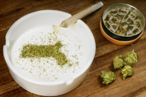 Massachusetts Cannabis History