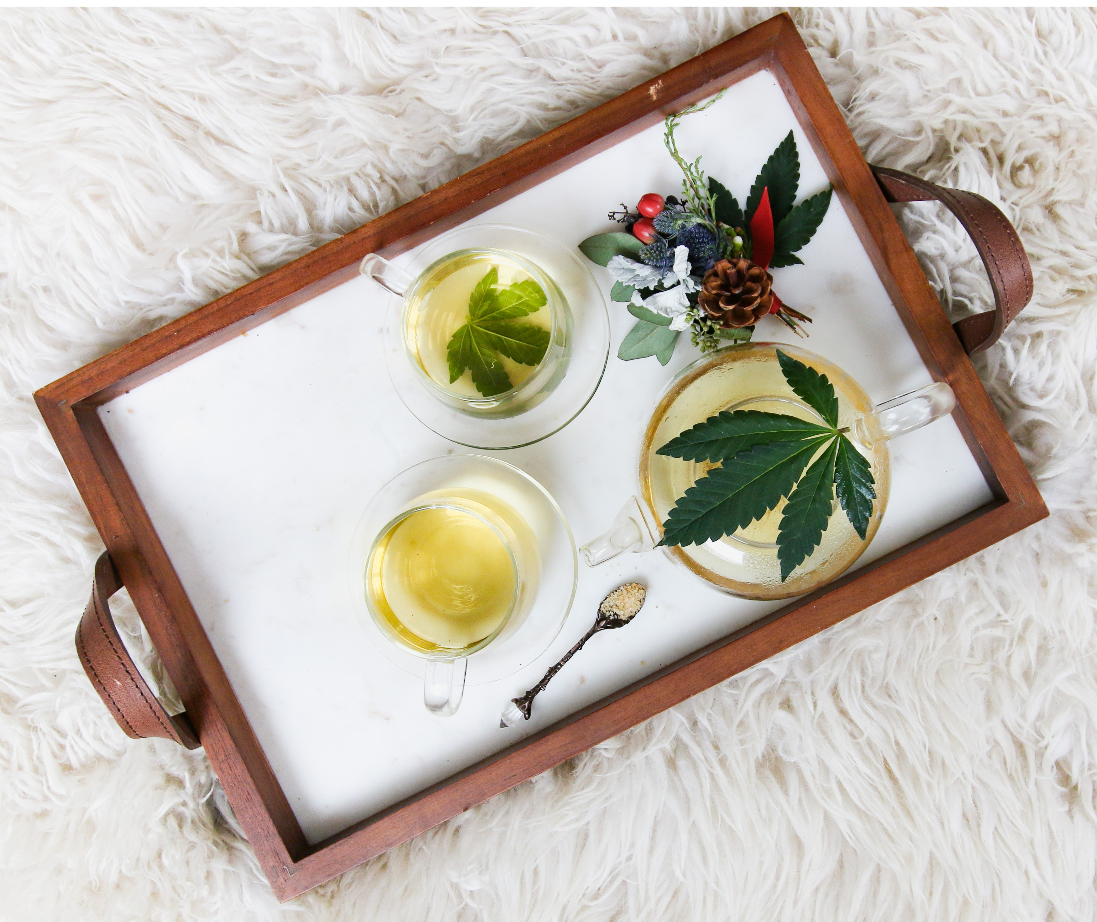Tray with herbal cannabis tea with sugar and pine cones