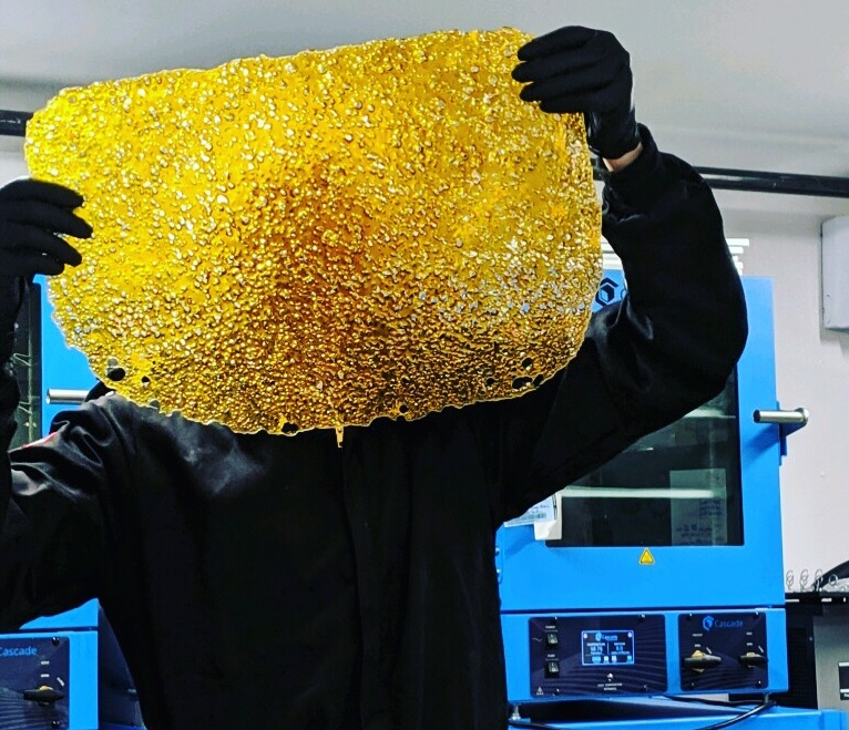 Process Specialist holding a large piece of shatter