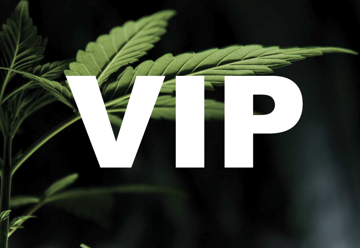 """A cannabis plant is overlaid with the text """"VIP."""""""