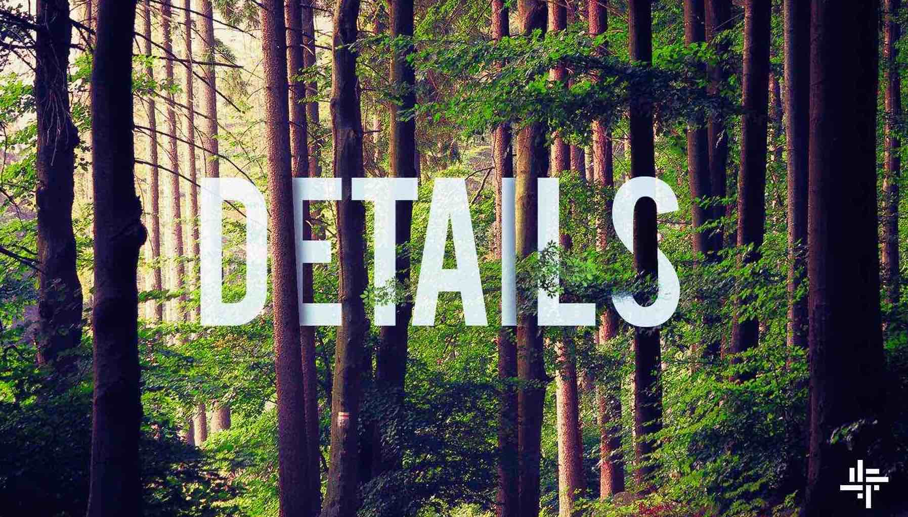 """A cover image showing trees in a forest, with the word """"details' visible through the trees."""