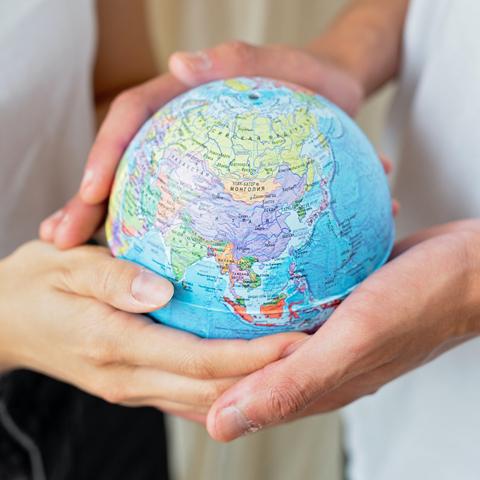 Modal globe