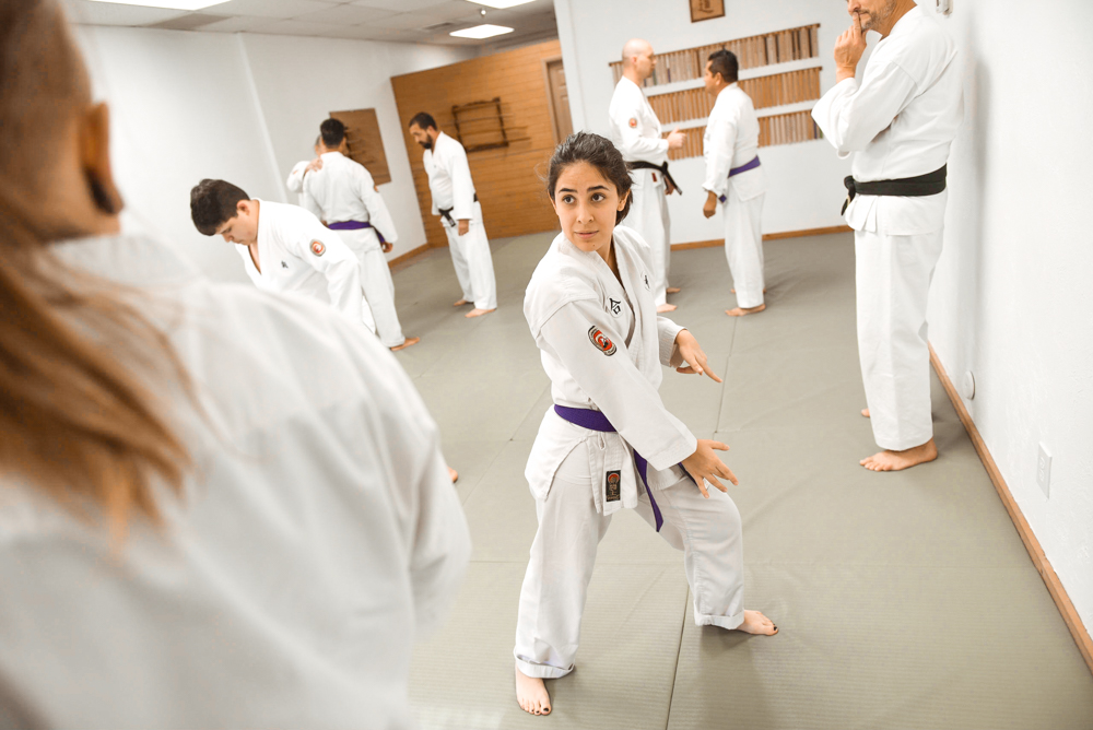 An NGA Purple Belt student is demonstrating the extended hanmi stance.