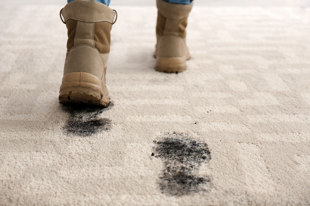 fall carpet cleaning