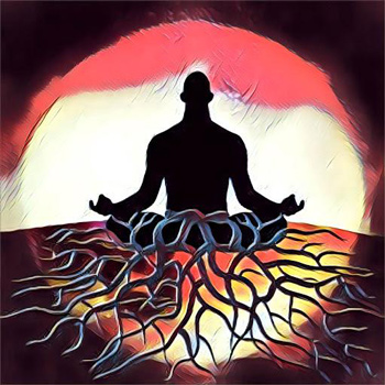 Sacral and Base Chakra Clearing, Growth and Stimulation - Sapien Medicne